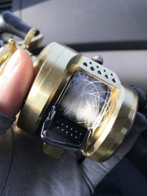 タックル1本のみで挑んだ釣り初めはモンスターバックラッシュにより即帰宅、おのれカルコン