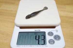 スカルピンは約4.3g